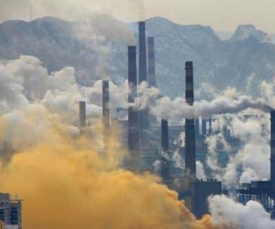 contaminación y adn