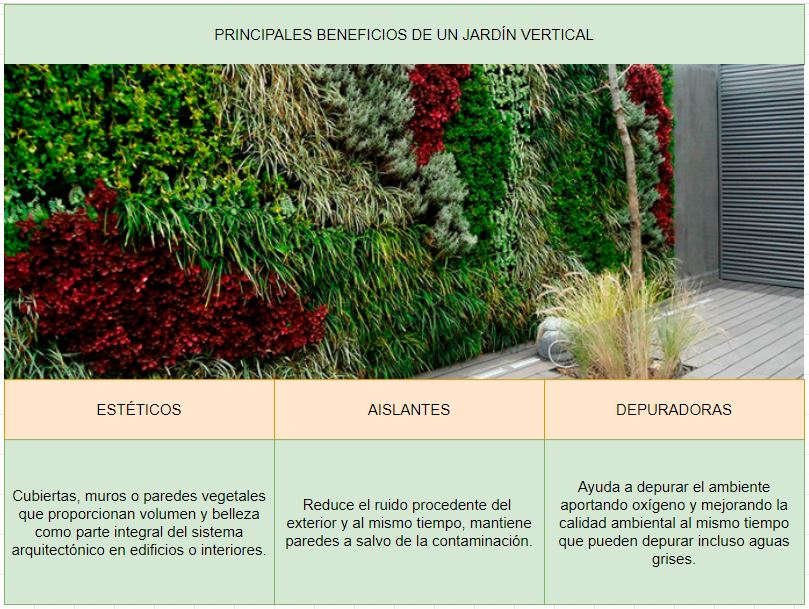 beneficios del jardín vertical