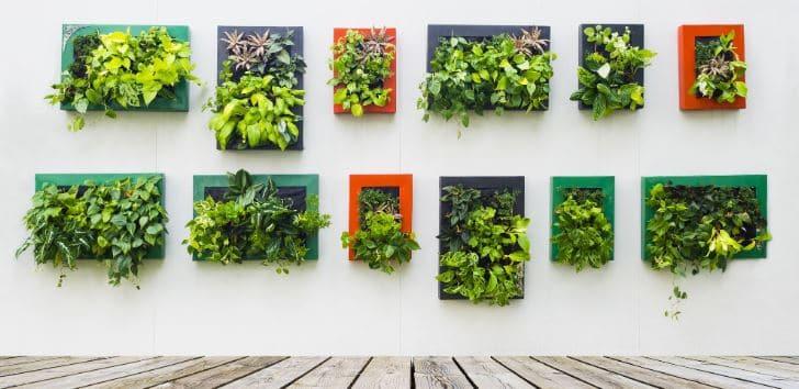 qué es y concepto de jardín vertical