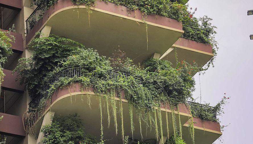 balcones con muchas plantas