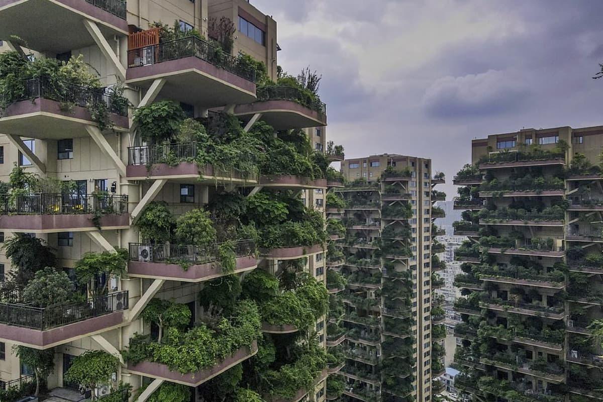 proyecto edificios bosque verde