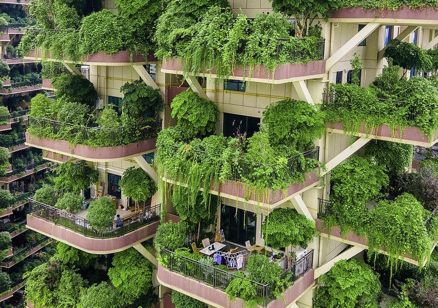 edificio que parece un bosque
