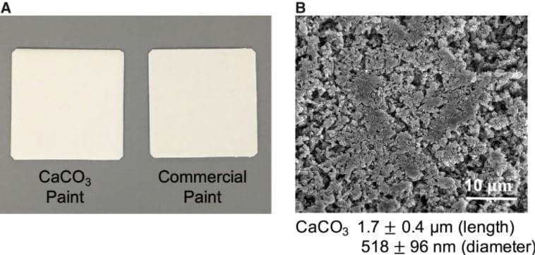 pintura con carbonato de calcio