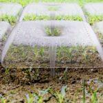innovaciones en agricultura