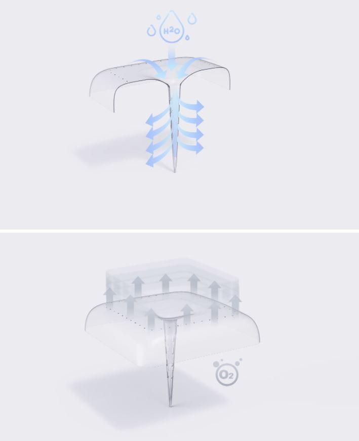 módulo para crecimiento plantas