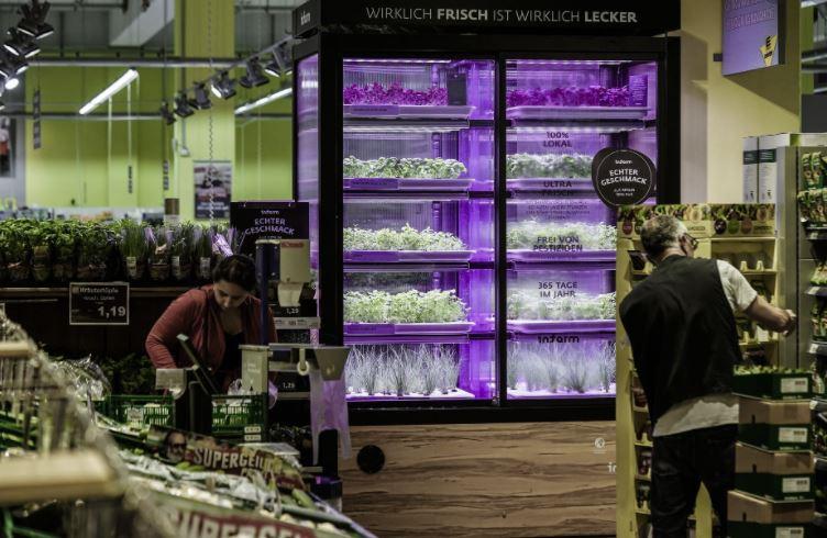 supermercados con huertos verduras frescas