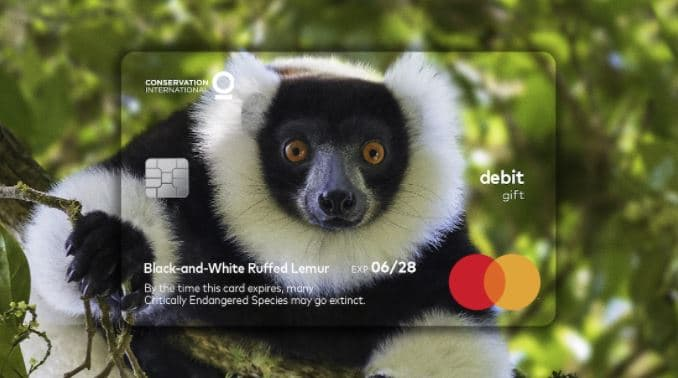 tarjeta crédito animales