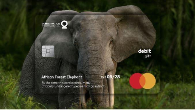 tarjeta crédito sobre elefantes