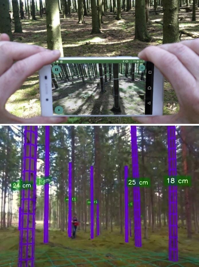 app para inventario de arboles en bosques